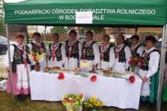 2012- Sukces _Grębowianek_ we Wrzawach